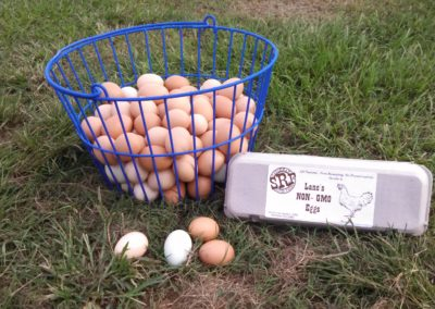 Savannah River Farms Organic Farm Fresh Eggs